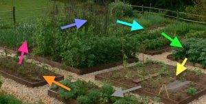 crop-rotation-beds-2x