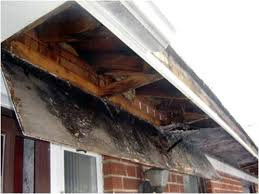 damage from clogged gutters