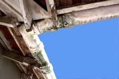 mouldy clogged gutters